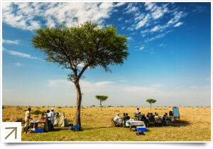Lunch in the Masai Mara